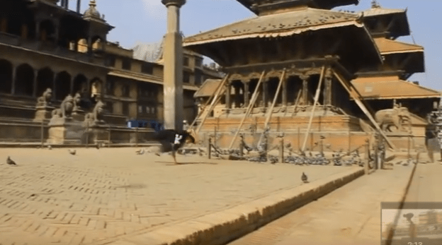 Nepali Parkour : Felines Inside