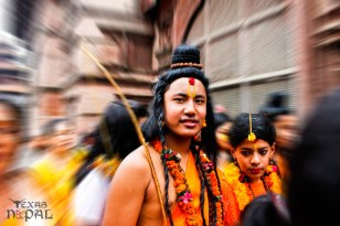 gai-jatra-festival-kathmandu-2069-10