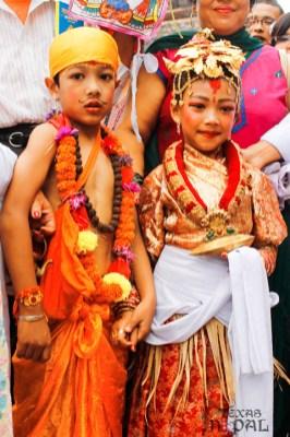 gai-jatra-festival-kathmandu-2069-12