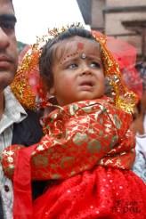gai-jatra-festival-kathmandu-2069-17