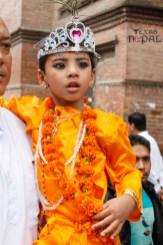 gai-jatra-festival-kathmandu-2069-20