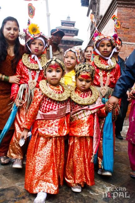 gai-jatra-festival-kathmandu-2069-22