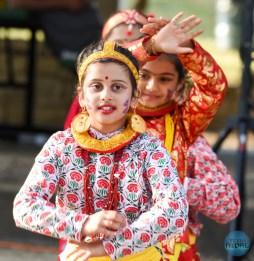 walk-for-nepal-dallas-2017-260