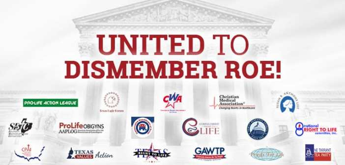 Seventeen Pro-Life groups unite to support the Dismemberment Abortion Ban