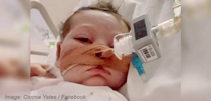 "Charlie Gard's parents reveal treatment has come too late: ""We're so sorry we couldn't save you, Charlie"""