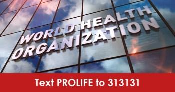 Pro-Lifers Applaud Defunding the Pro-Abortion World Health Organization