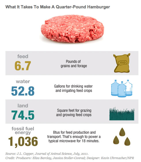 Image result for water and the meat industry