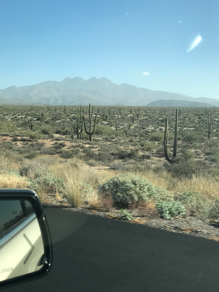 Heading up the Beeline Highway out of Phoenix.
