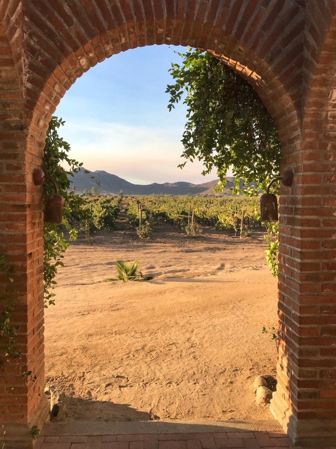 Where to Drink, Eat and Sleep in the Valle de Guadalupe, Baja California North, Mexico