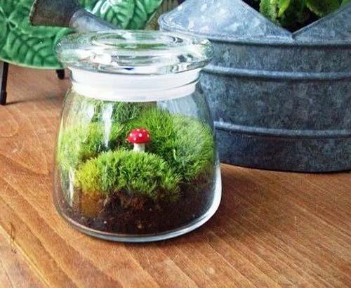 20 ιδέες για διακόσμηση με γυάλινες συνθέσεις φυτών