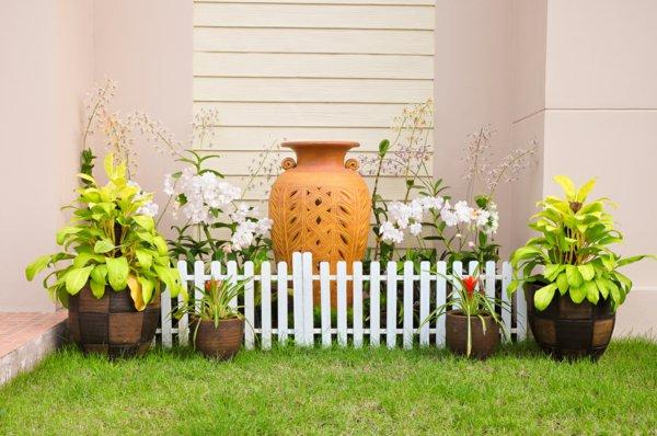 φυτογραφίες για το σχεδιασμό κήπων101