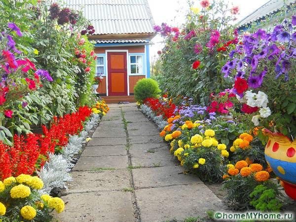 Λουλούδια μπροστά από το σπίτι9