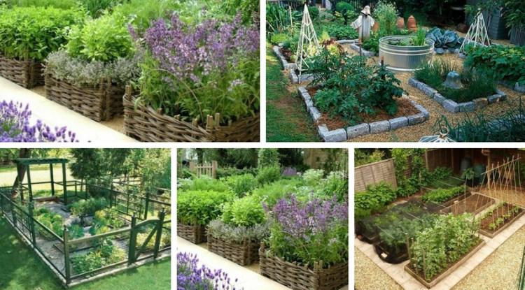 αστικός κήπος λαχανικών ιδέες