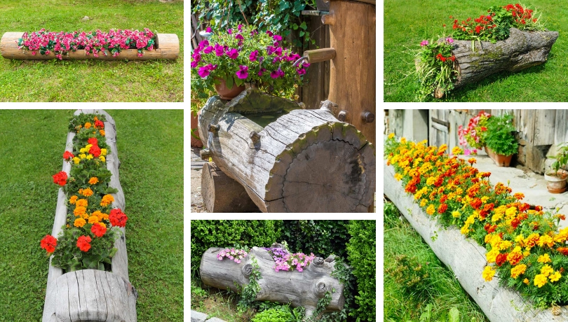 27 Φανταστικές DIY ιδέες για να μεταμορφώσετε τον κορμό ενός δέντρου σε μια όμορφη διακόσμηση για τον κήπο