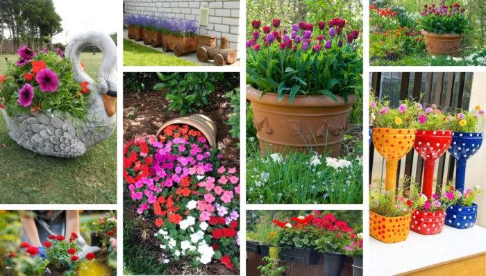 56 Φανταστικές ιδέες με λουλούδια στον κήπο, μια ευχάριστη απόλαυση για τους λάτρεις των πολύχρωμων φυτών