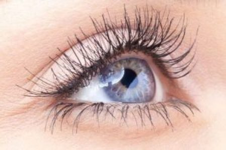 Image result for What is a retina specialist?