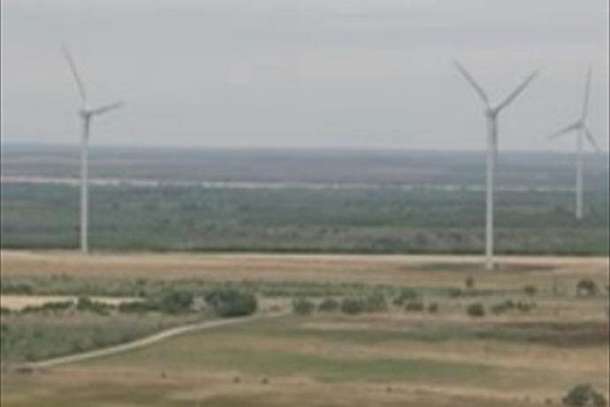 Wind Farm_115254200084154959