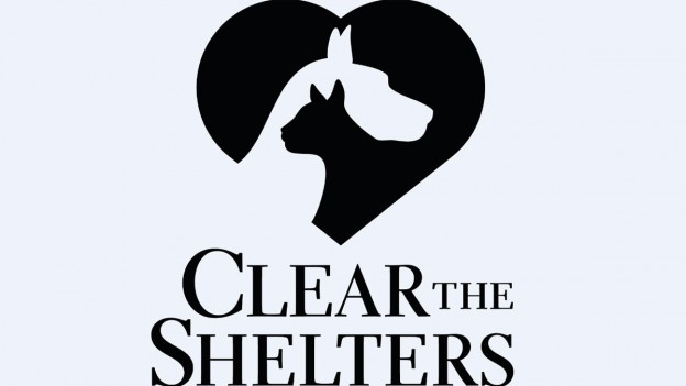 clear the shelters_1502829684488.jpg