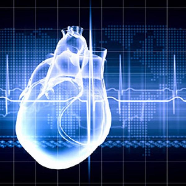 heart-CardiacElectrophysiology_1551218850122.jpg