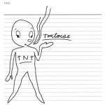 TNT Tortoise