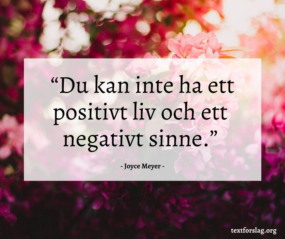 Positiva citat (6)