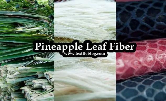 Pineapple Leaf Fiber