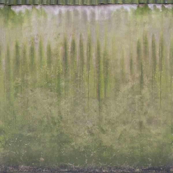 ConcreteMossy0042  Free Background Texture  concrete