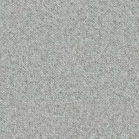 Light Grey Carpet Texture