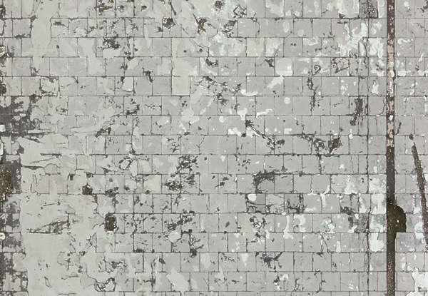 FloorsRegular0243  Free Background Texture  brick floor