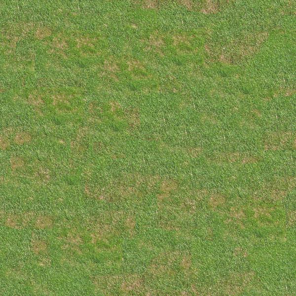 grass0001 free background texture