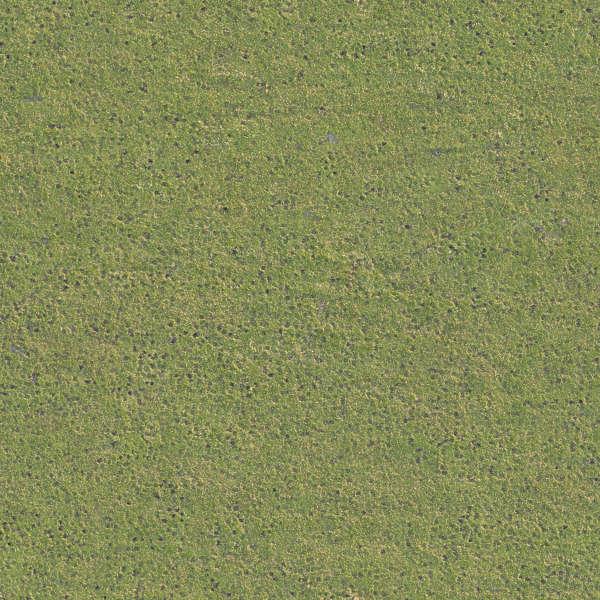 grass0202 free background texture