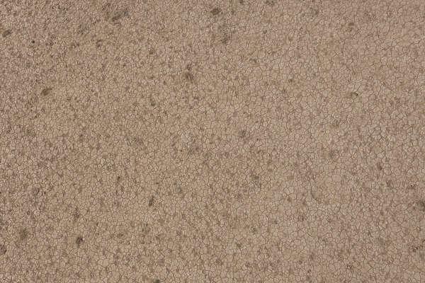 Soilsand0209 Free Background Texture Soil Ground Dirt