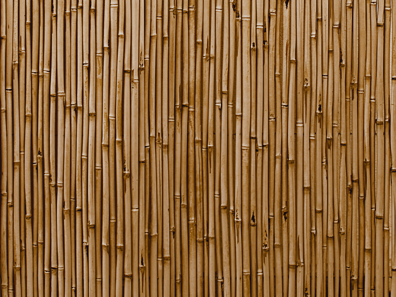 bamboo wall texture high
