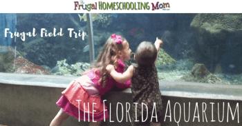 Frugal free educational field trip to The Florida Aquarium at Tampa f