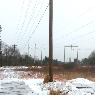 PSNH | 32W5 Distribution Line Project