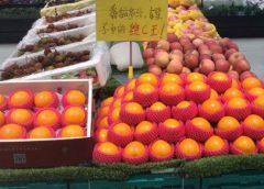 Cina: continua l'export di arance italiane per Oranfrizer