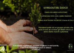 Il Seme di Chico, nuovo progetto solidale dell'Associazione Straula