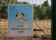 Al Dubini uno spazio dedicato ai cani