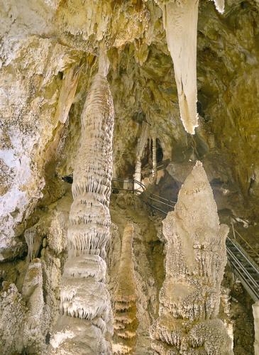Liguria da scoprire Toirano e le sue grotte  Tgcom24  Foto 1