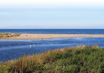 Cunning Park seaward view