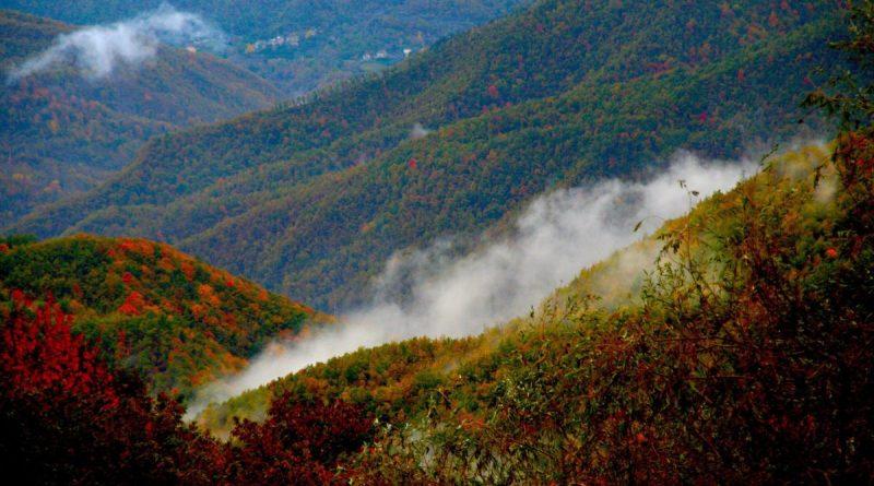 leofara valle castellana