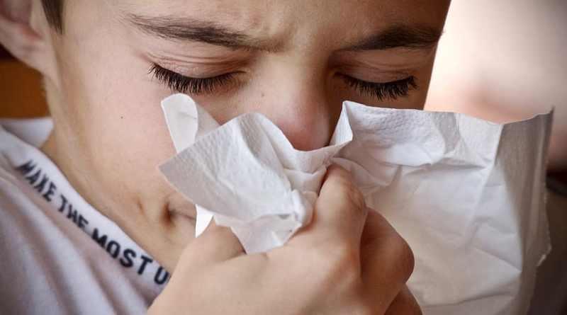 Starnuto Influenza