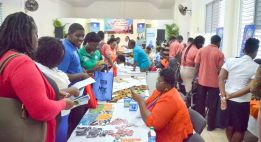 Handicraft offers excellent opportunities for self-employment and small business development in Tobago.