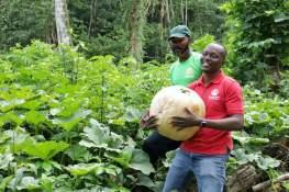 Chief Secretary Dennis carries a pumpkin while visiting Glennon Sharpe of Grazer One Farm.