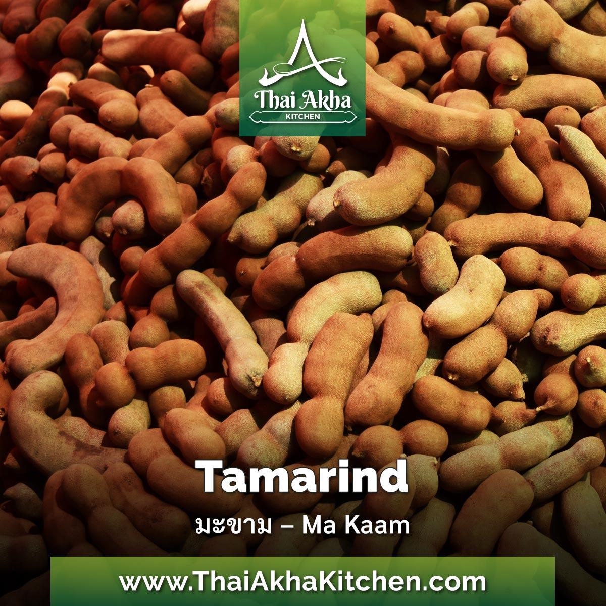 Tamarind– มะขาม – Ma Kaam