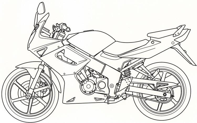 วาดเส้น Adobe Illustrator
