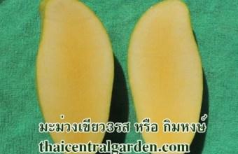 มะม่วงเขียว 3รส หรือกิมหงษ์ สีและรสชาติเนื้อคล้ายแก้วขมิ้น