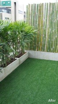 Tropical Balcony Garden in Bangkok, Thailand - Thai Garden ...