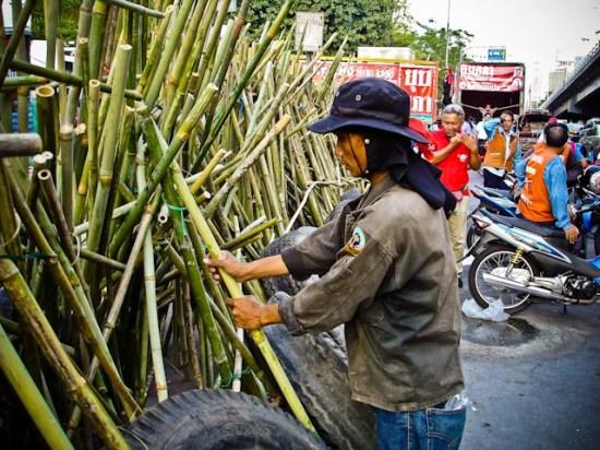 Reds Bamboo traps in Bangkok