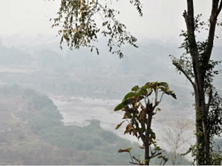 Mae Sai district, on Tuesday registered as the highest level in the region at almost 300 micrograms per cubic metre.